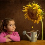 cele mai bune poze 2012 (50)