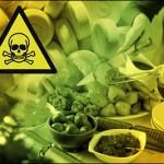 e-uri codex alimentarius