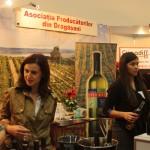 vin 2013 (9)