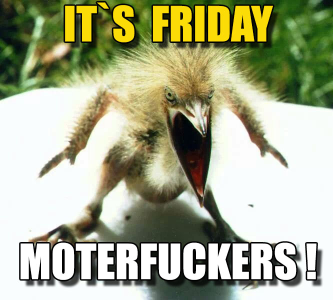 it`s_friday_motherfuckers