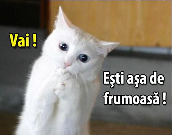 Vai_esti_asa_de_frumoasa