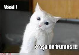 e_asa_de_frumos