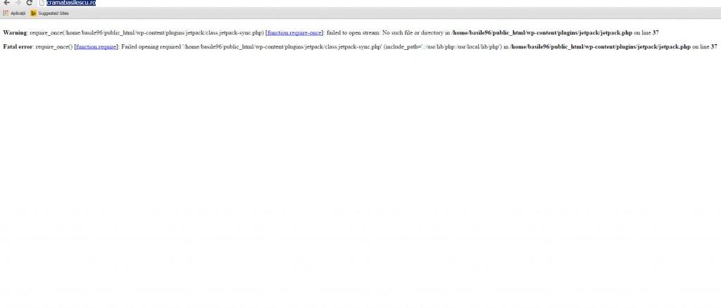 eroare-website-basilescu