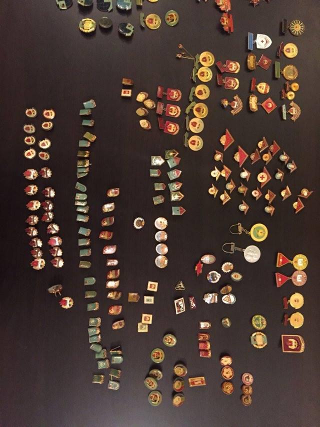 colectie-insigne-pionieri-romania