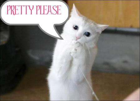 please_cat